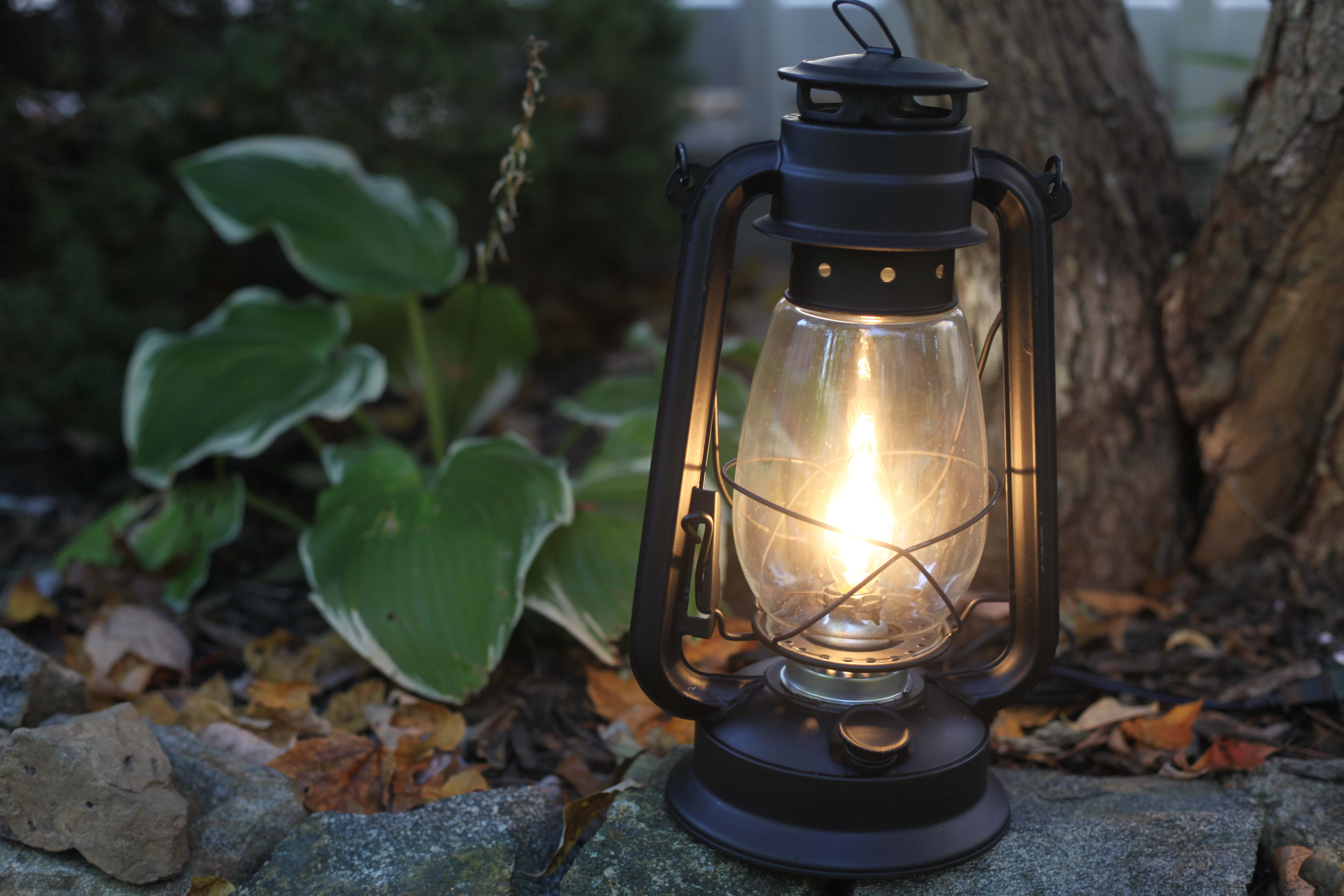 Electric Lantern Table Lamp Flat Black Lantern Electric Hurricane